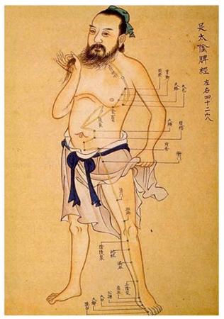 Planche acupuncture - MTC